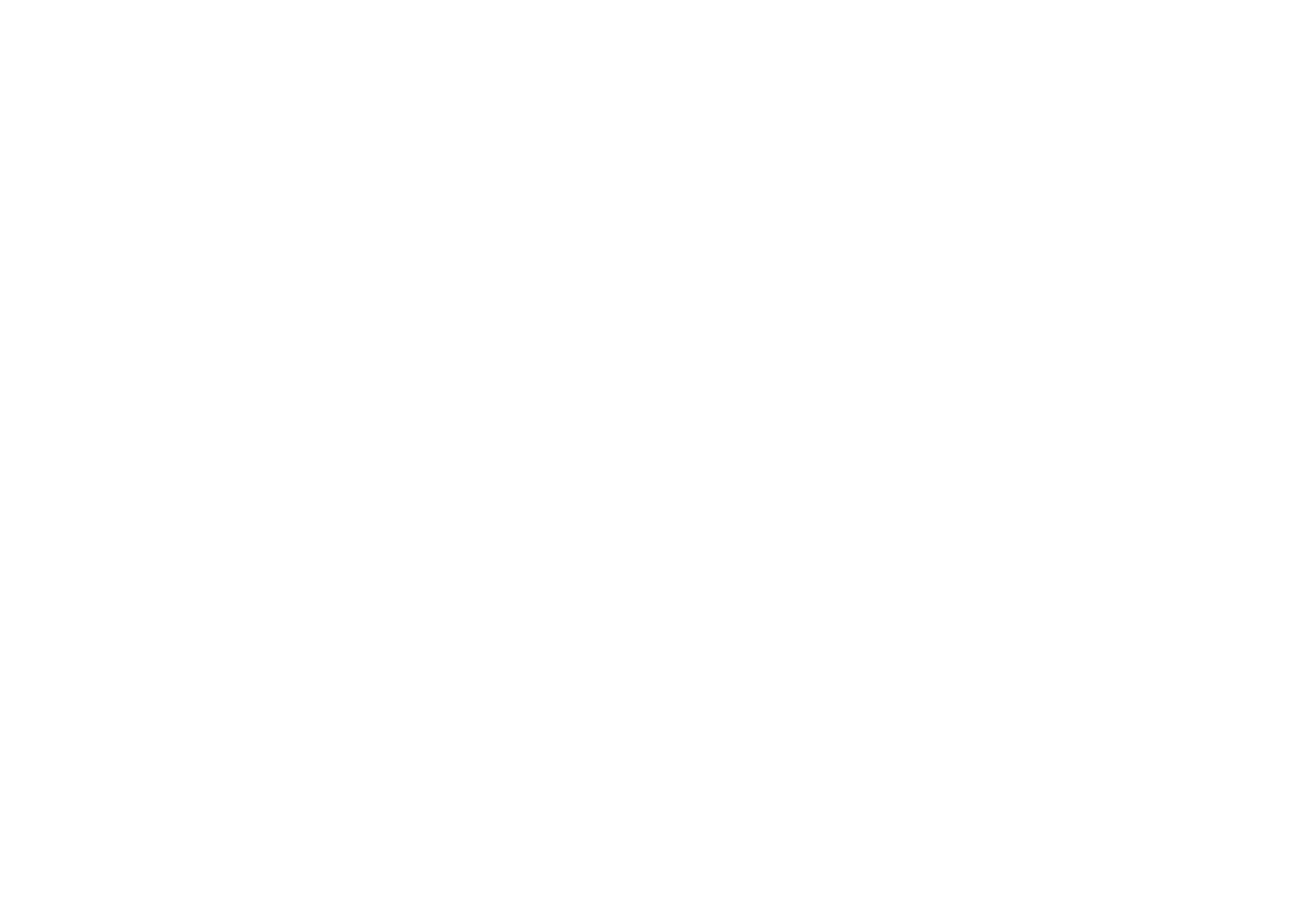 salesforce-logo-white